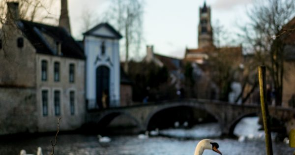Sony Zeiss 55mm in Bruges