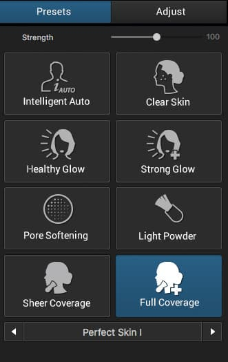 The Perfect Skin Presets tab