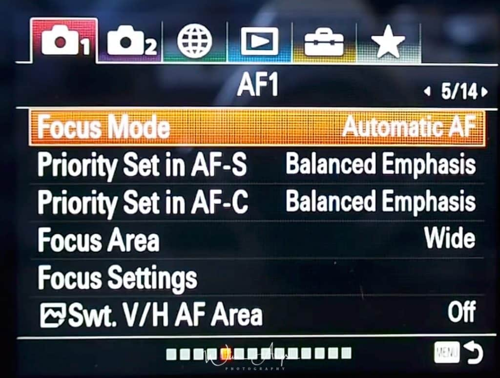 Sony A7 III Advanced manual with settings, tip and tricks