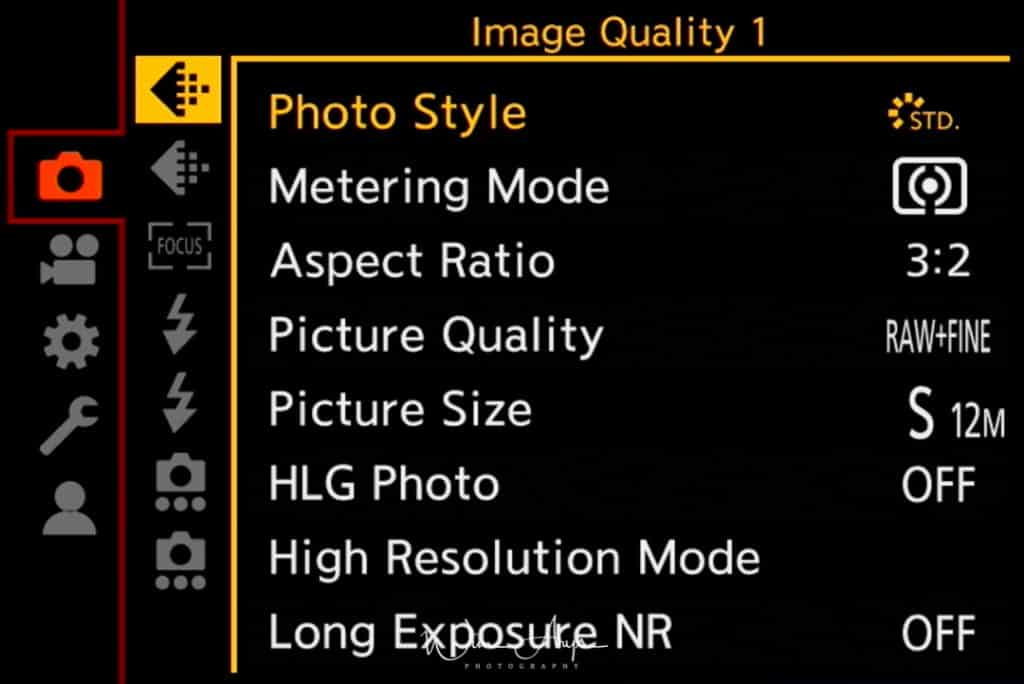 Panasonic S1, photo settings, image quality, page 1