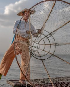 Inle lake carp fisherman, Inle, Myanmar