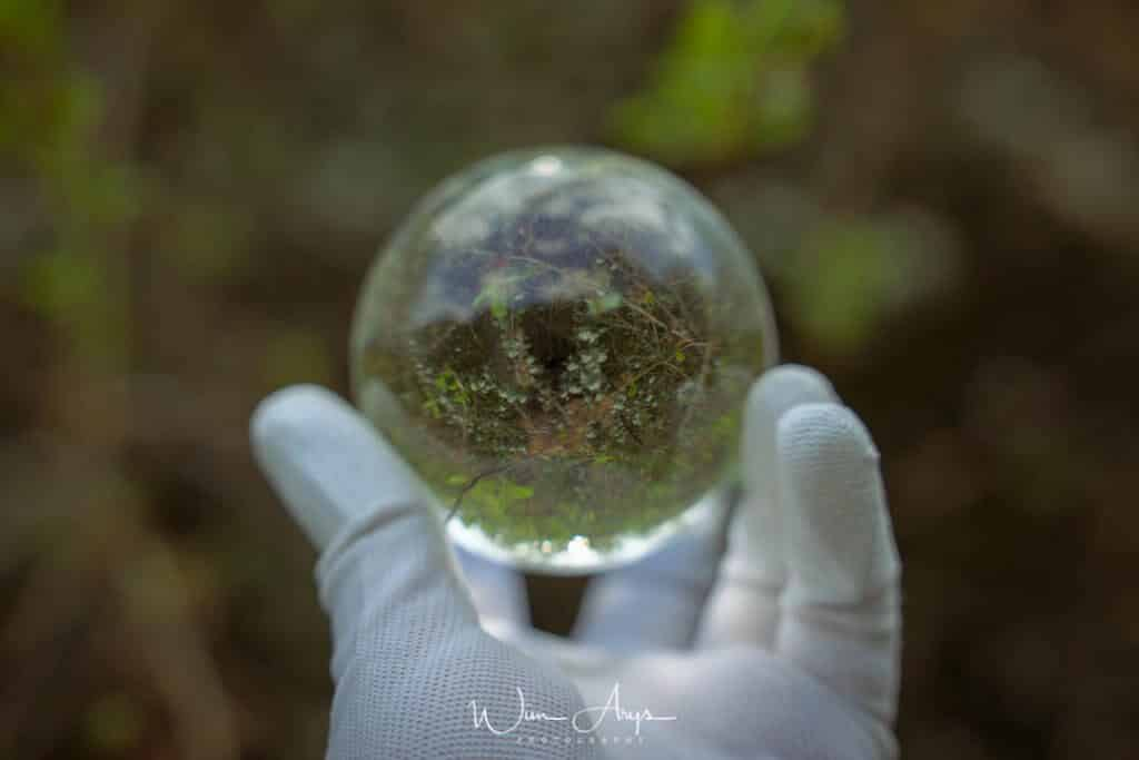 lensball photography example
