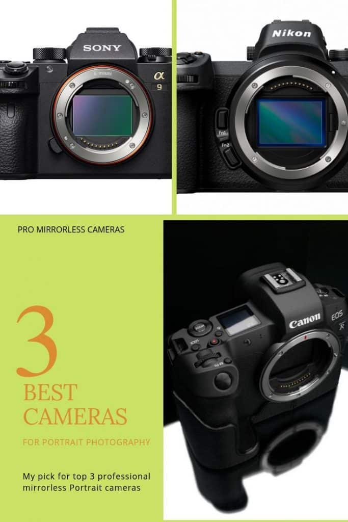 top 3 mirrorless portrait cameras