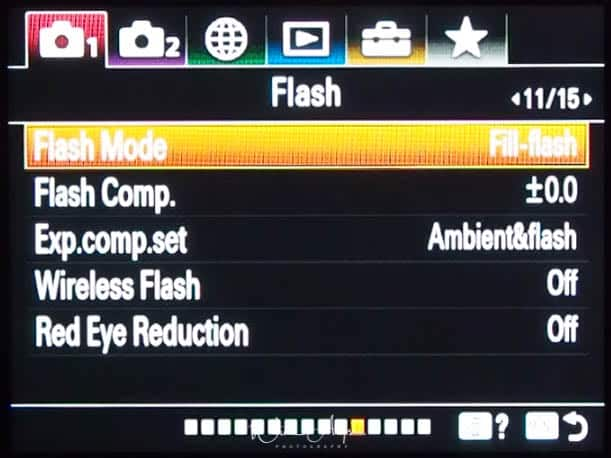 red camera icon page 10 Flash settings)