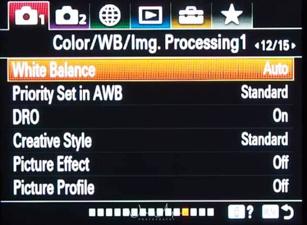 red camera icon page 12 : color, white balance and image processing settings 1