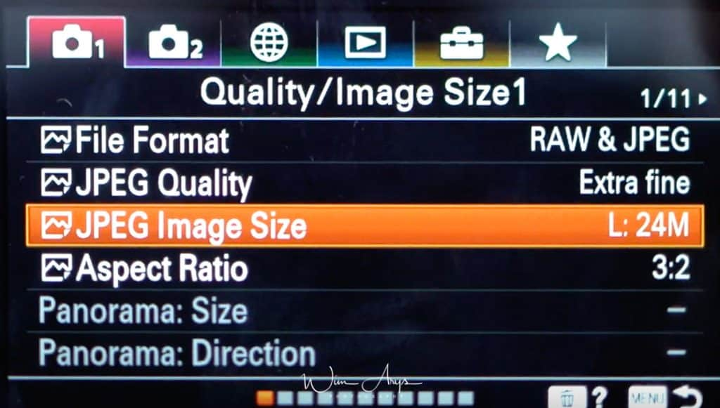 Sony A6100 Quality and image size settings