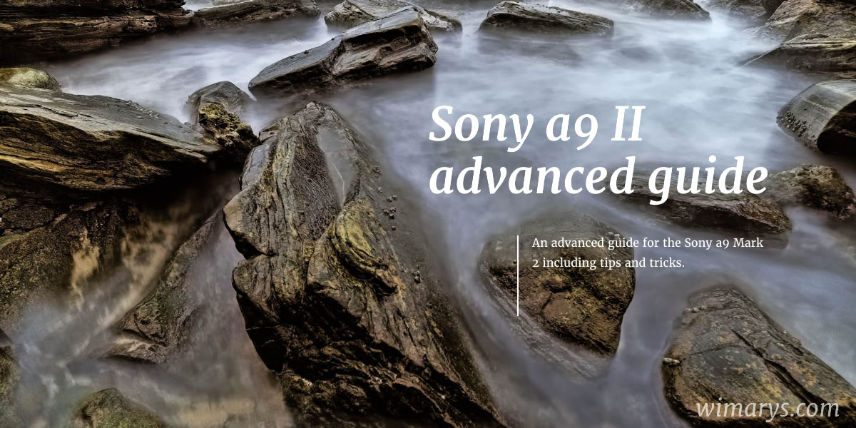 Sony a9II: settings, tips and tricks